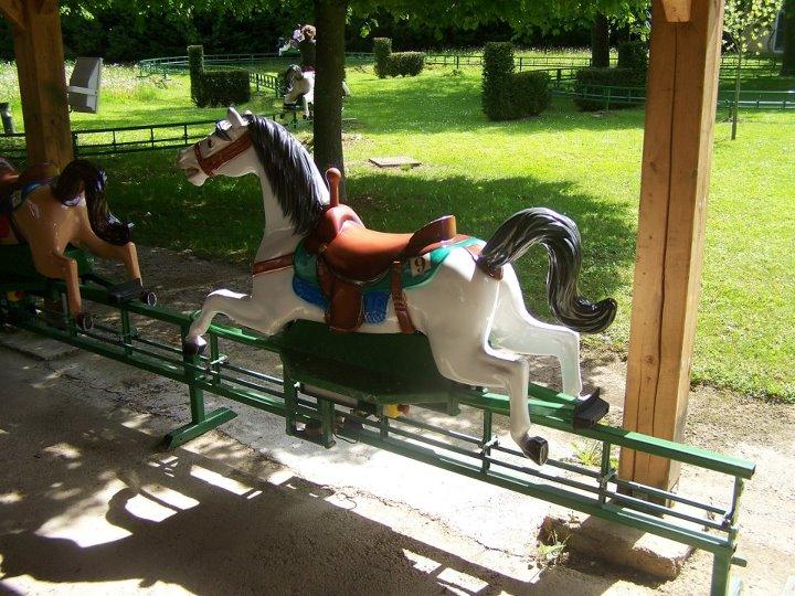 Horse Circuit插图(5)